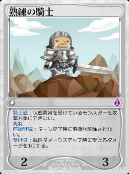 熟練の騎士