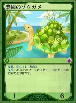 楽園のゾウガメ
